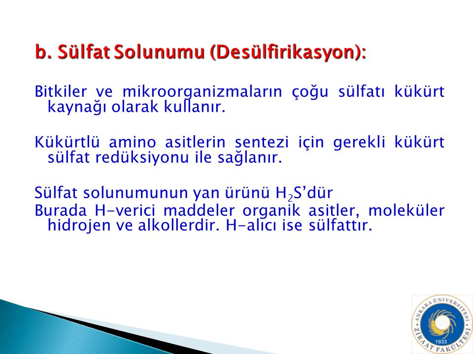 b. Sülfat Solunumu (Desülfirikasyon):