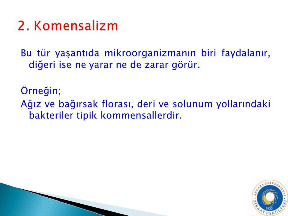 2. Komensalizm