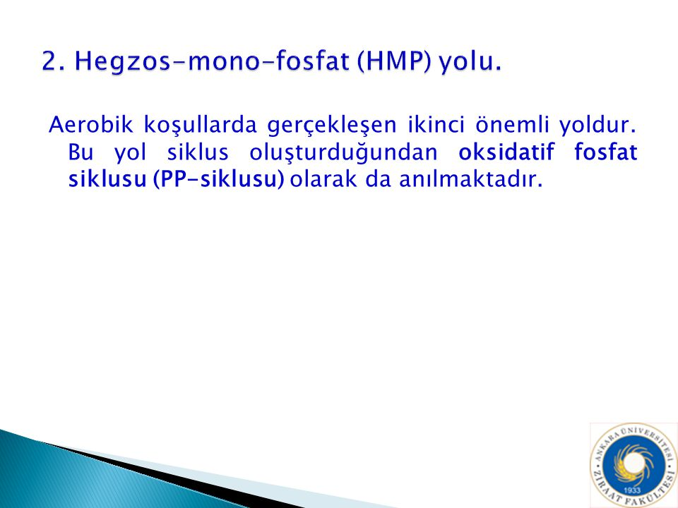 2. Hegzos-mono-fosfat (HMP) yolu.