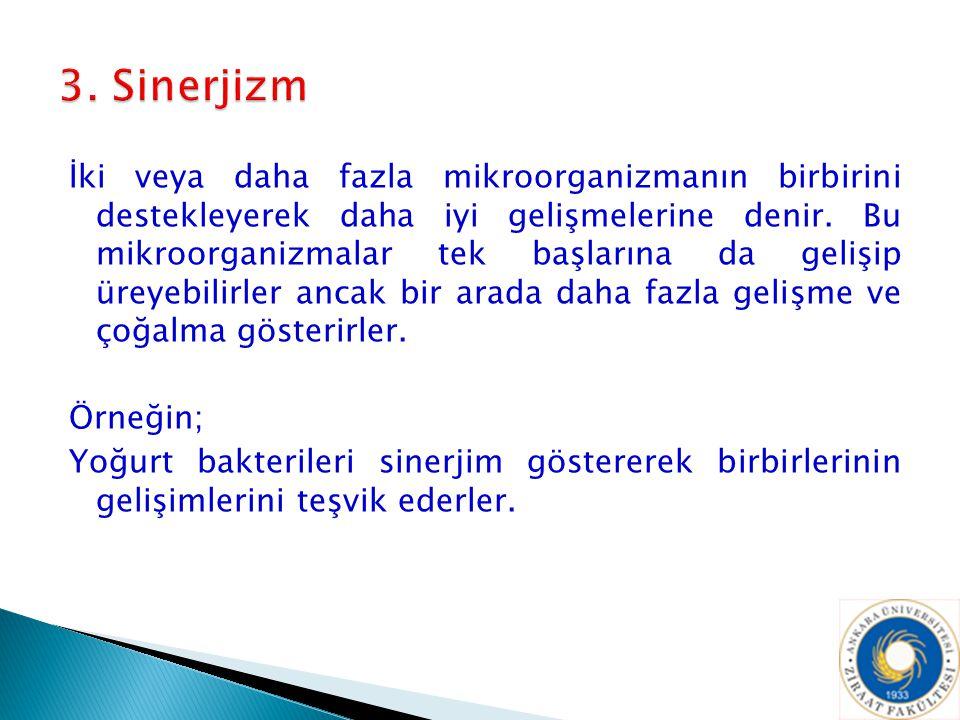 3. Sinerjizm