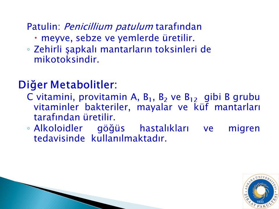 Diğer Metabolitler: Patulin: Penicillium patulum tarafından