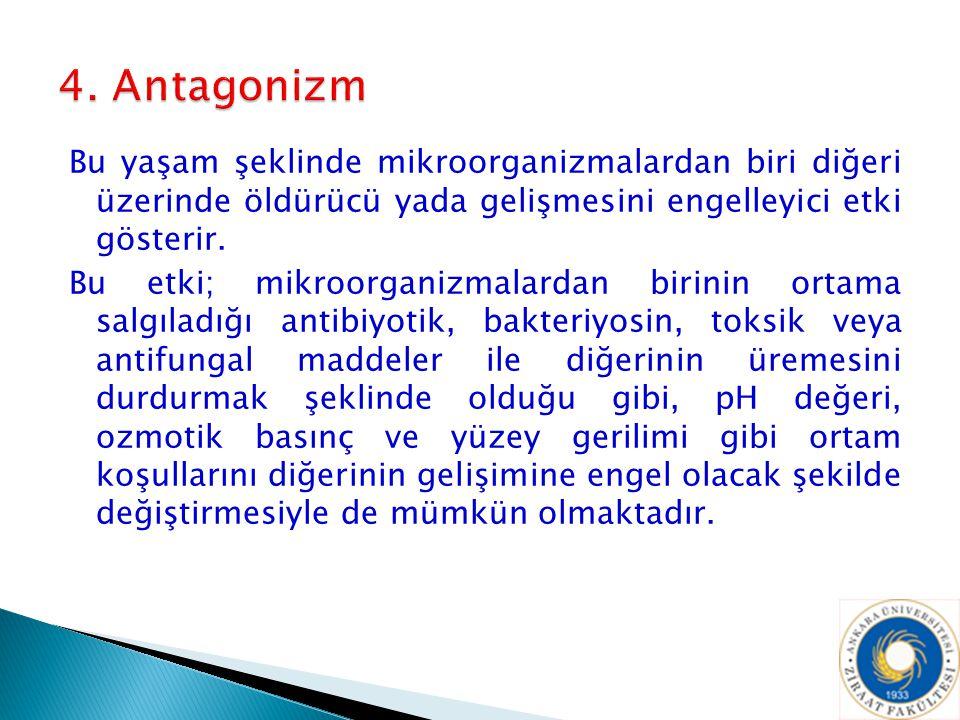4. Antagonizm