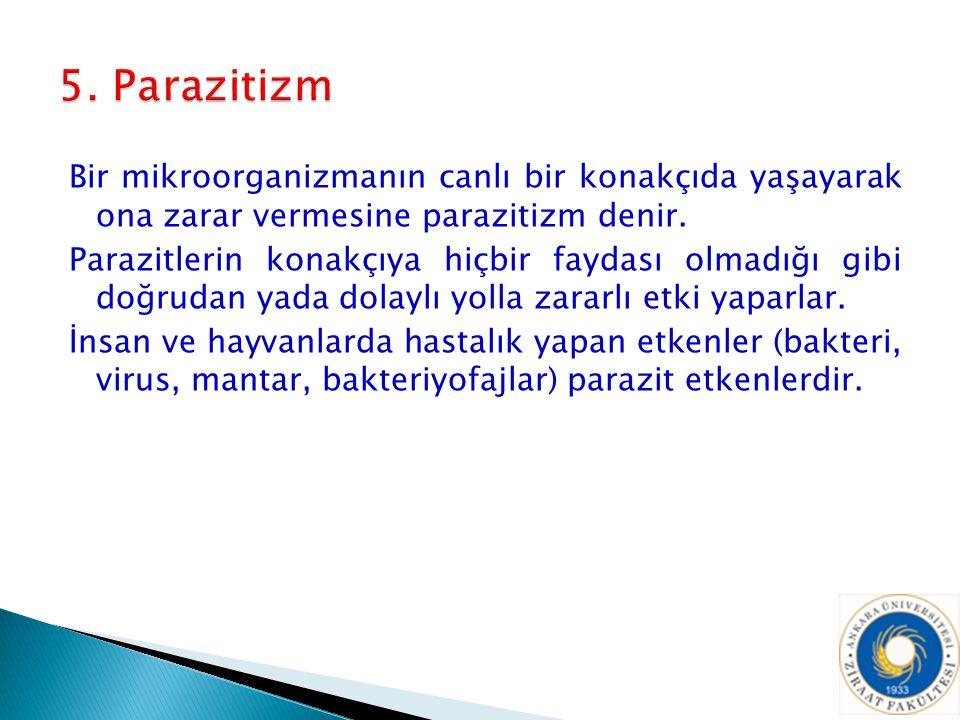 5. Parazitizm