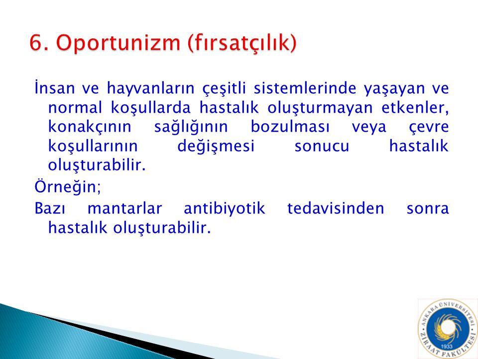6. Oportunizm (fırsatçılık)