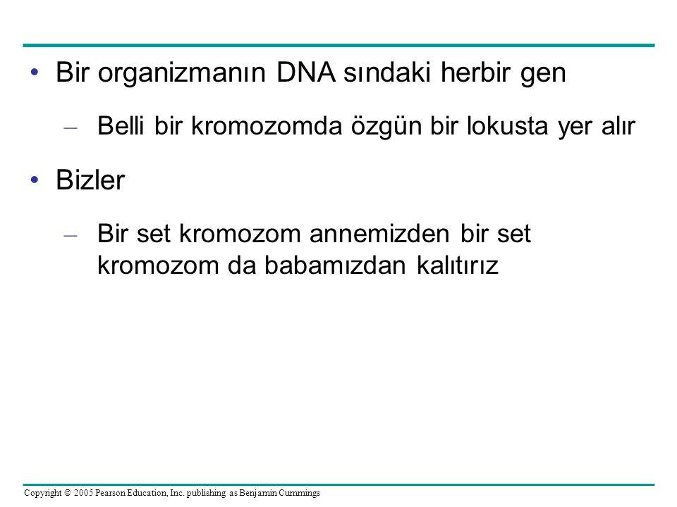 Bir organizmanın DNA sındaki herbir gen