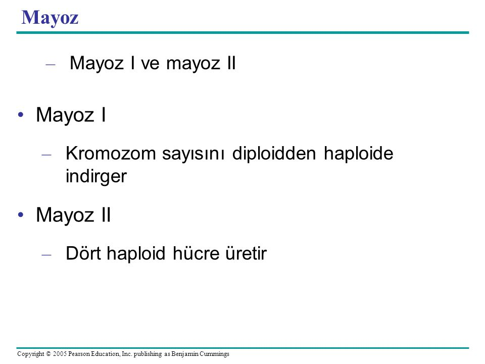 Mayoz Mayoz I Mayoz II Mayoz I ve mayoz II
