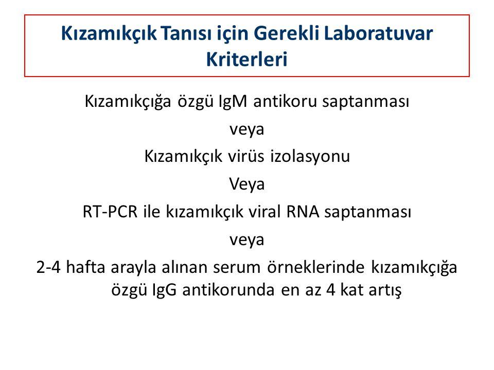 Kızamıkçık Tanısı için Gerekli Laboratuvar Kriterleri