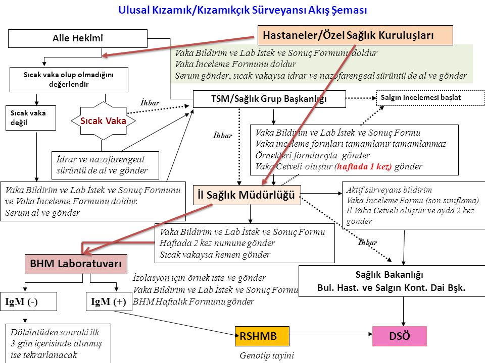 Ulusal Kızamık/Kızamıkçık Sürveyansı Akış Şeması DSÖ