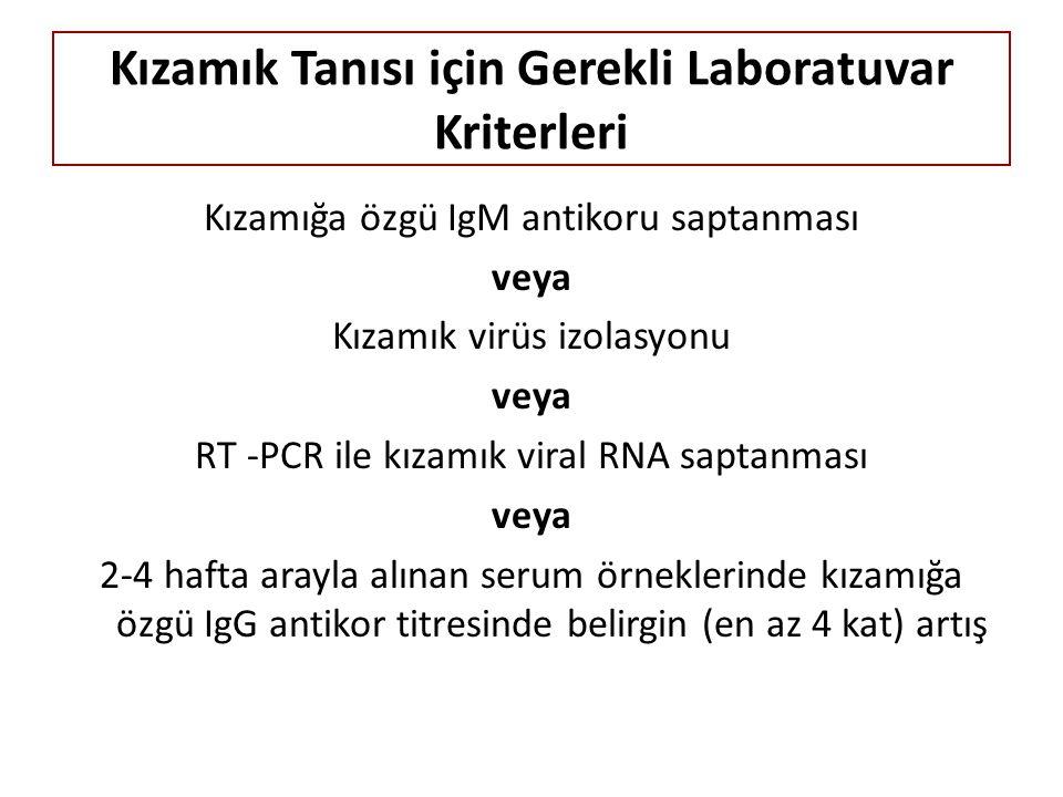 Kızamık Tanısı için Gerekli Laboratuvar Kriterleri