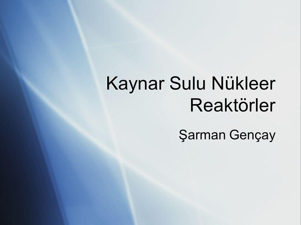 Kaynar Sulu Nükleer Reaktörler