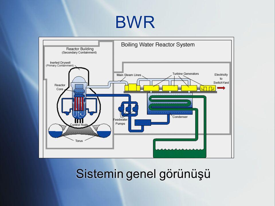 Sistemin genel görünüşü
