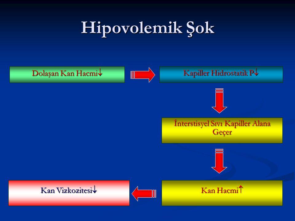 Hipovolemik Şok Dolaşan Kan Hacmi Kapiller Hidrostatik P