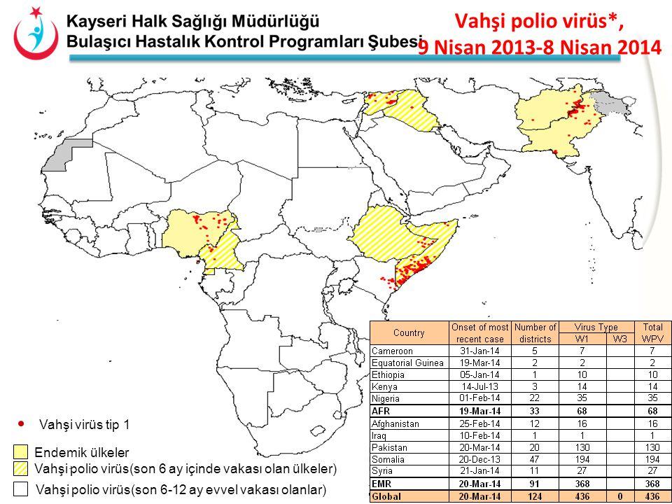 Vahşi polio virüs*, 9 Nisan 2013-8 Nisan 2014