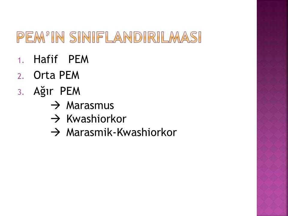 PEM'in SINIFLANDIRILMASI