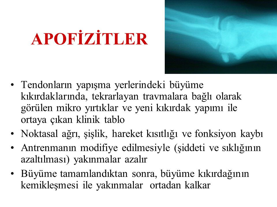 APOFİZİTLER