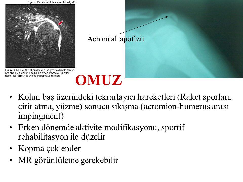 Acromial apofizit OMUZ.