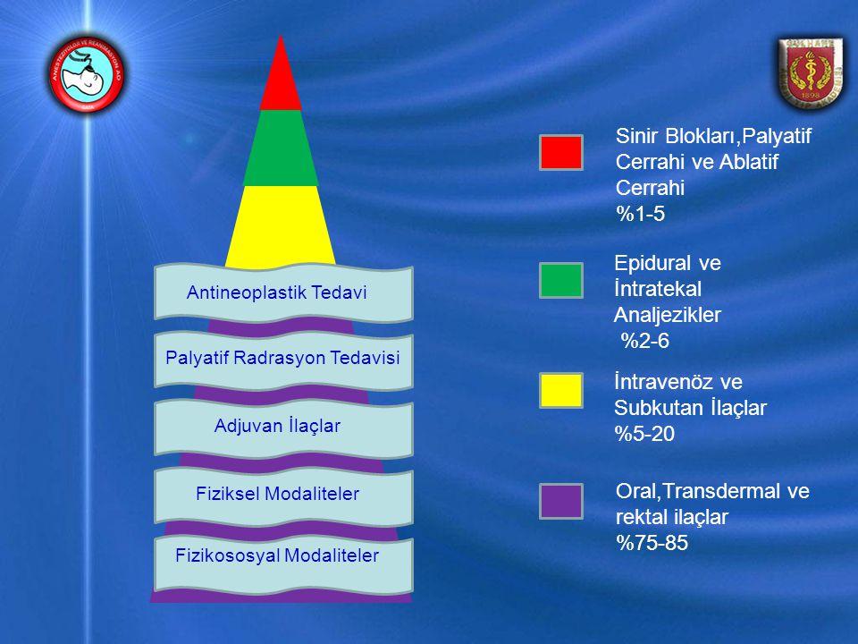 Sinir Blokları,Palyatif Cerrahi ve Ablatif Cerrahi