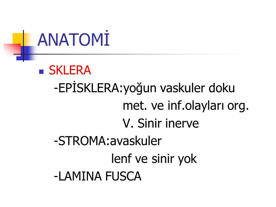 ANATOMİ SKLERA -EPİSKLERA:yoğun vaskuler doku