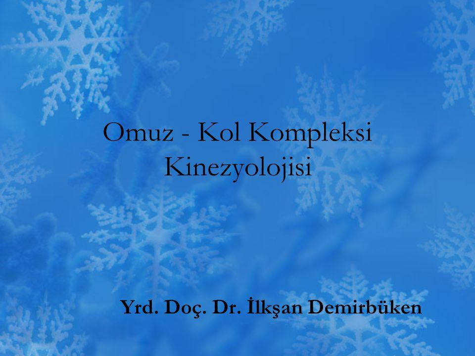 Omuz - Kol Kompleksi Kinezyolojisi
