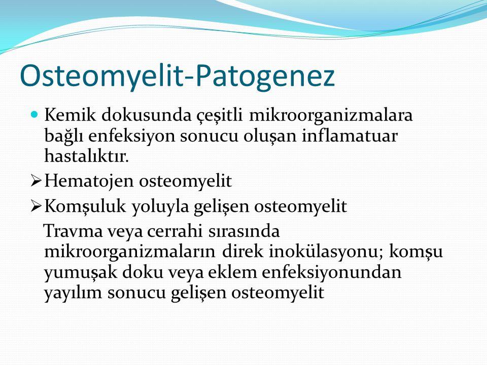 Osteomyelit-Patogenez