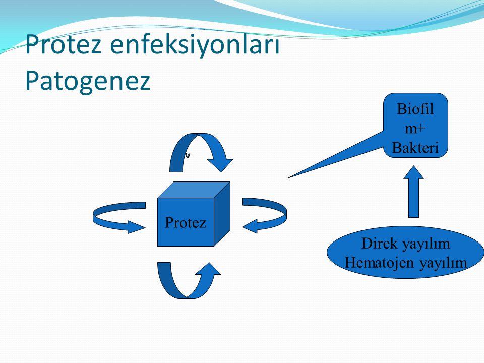 Protez enfeksiyonları Patogenez