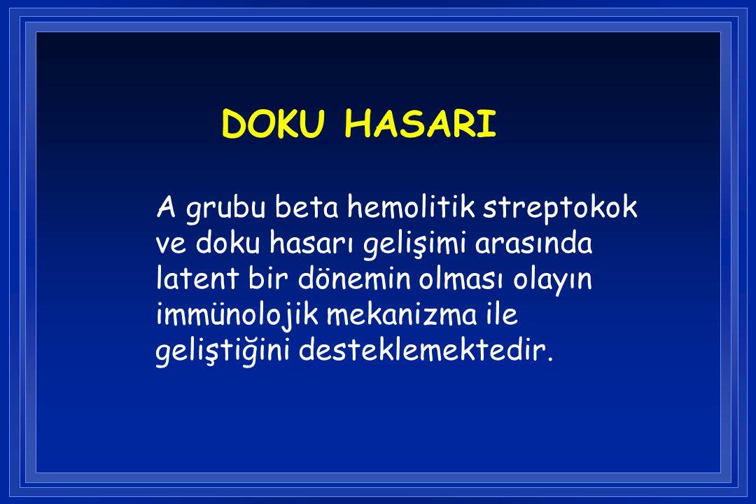 DOKU HASARI