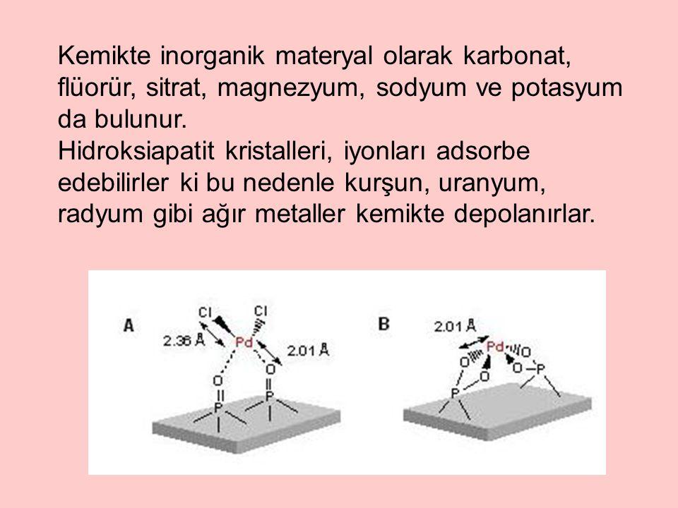 Kemikte inorganik materyal olarak karbonat, flüorür, sitrat, magnezyum, sodyum ve potasyum da bulunur.