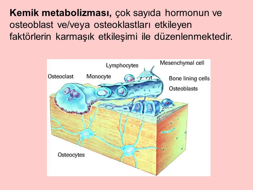 Kemik metabolizması, çok sayıda hormonun ve osteoblast ve/veya osteoklastları etkileyen faktörlerin karmaşık etkileşimi ile düzenlenmektedir.