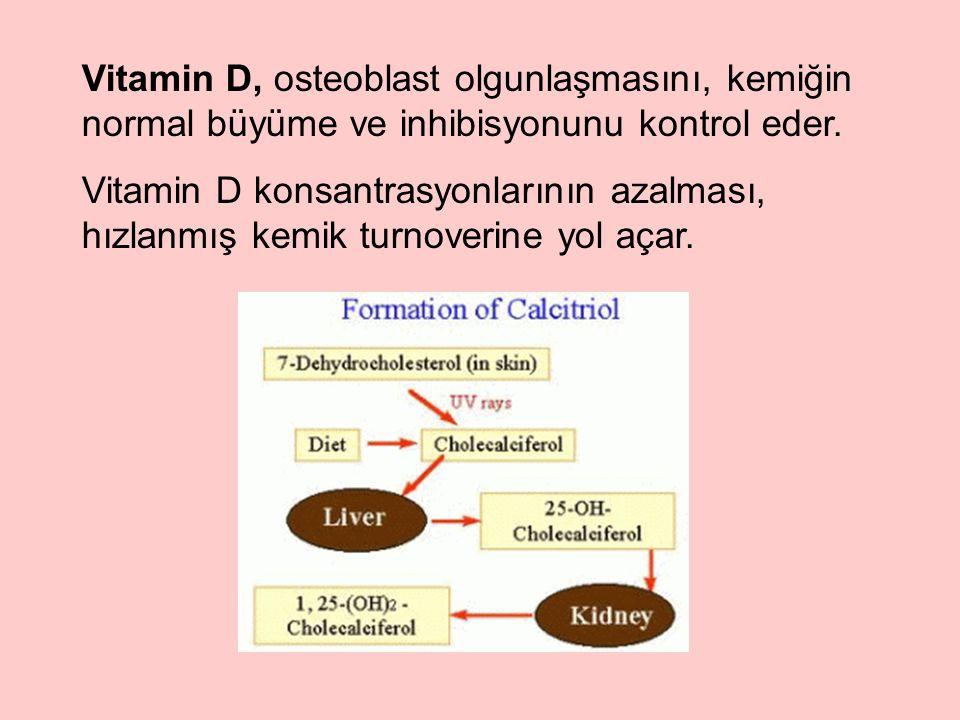 Vitamin D, osteoblast olgunlaşmasını, kemiğin normal büyüme ve inhibisyonunu kontrol eder.