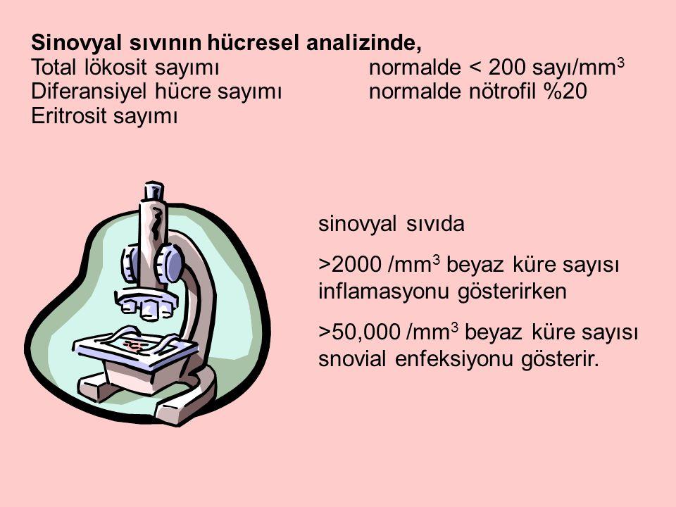Sinovyal sıvının hücresel analizinde,