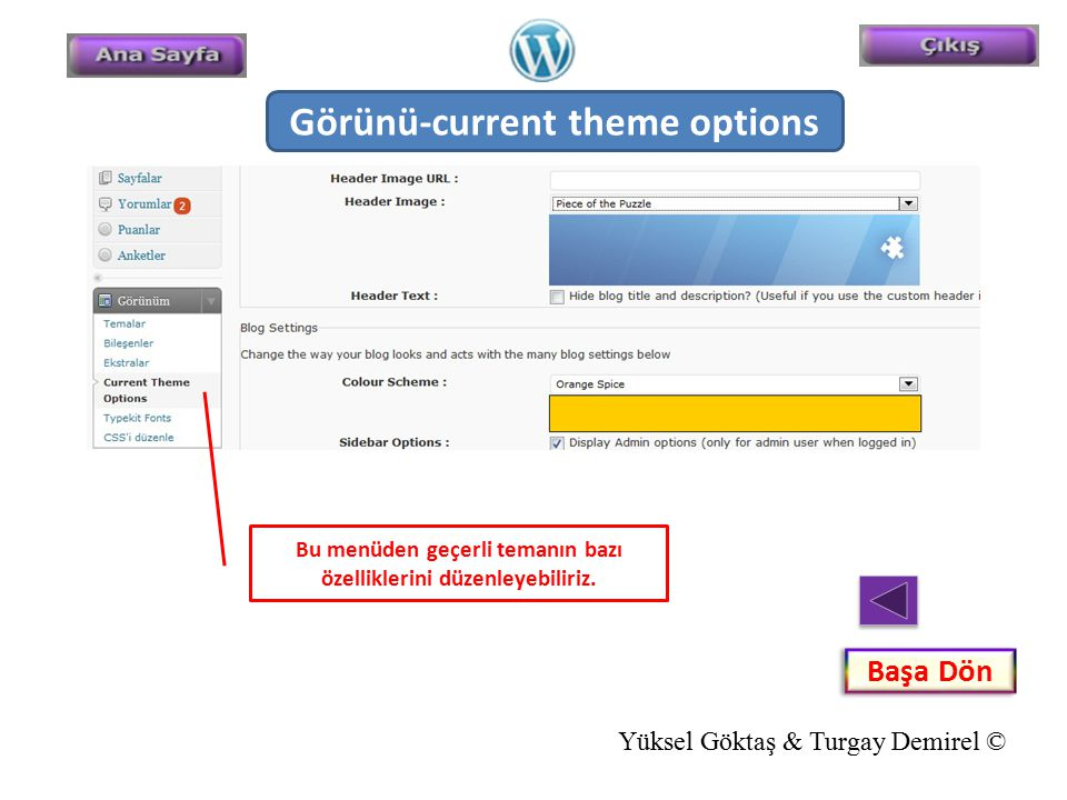 Görünü-current theme options