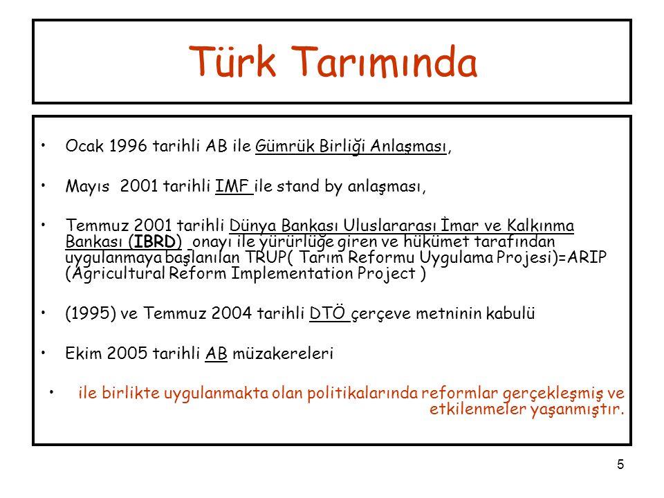 Türk Tarımında Ocak 1996 tarihli AB ile Gümrük Birliği Anlaşması,