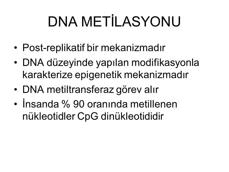 DNA METİLASYONU Post-replikatif bir mekanizmadır