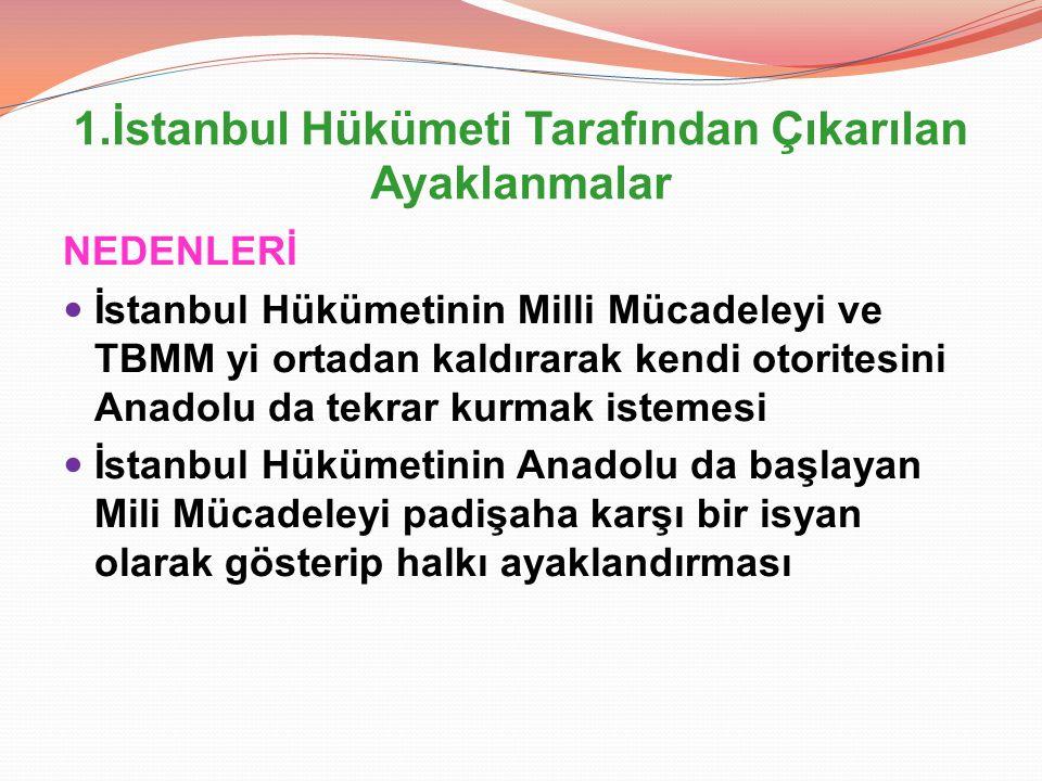 1.İstanbul Hükümeti Tarafından Çıkarılan Ayaklanmalar