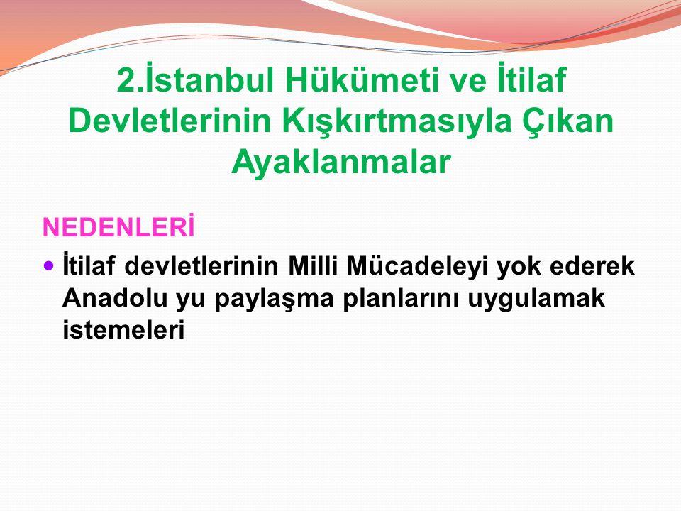2.İstanbul Hükümeti ve İtilaf Devletlerinin Kışkırtmasıyla Çıkan Ayaklanmalar