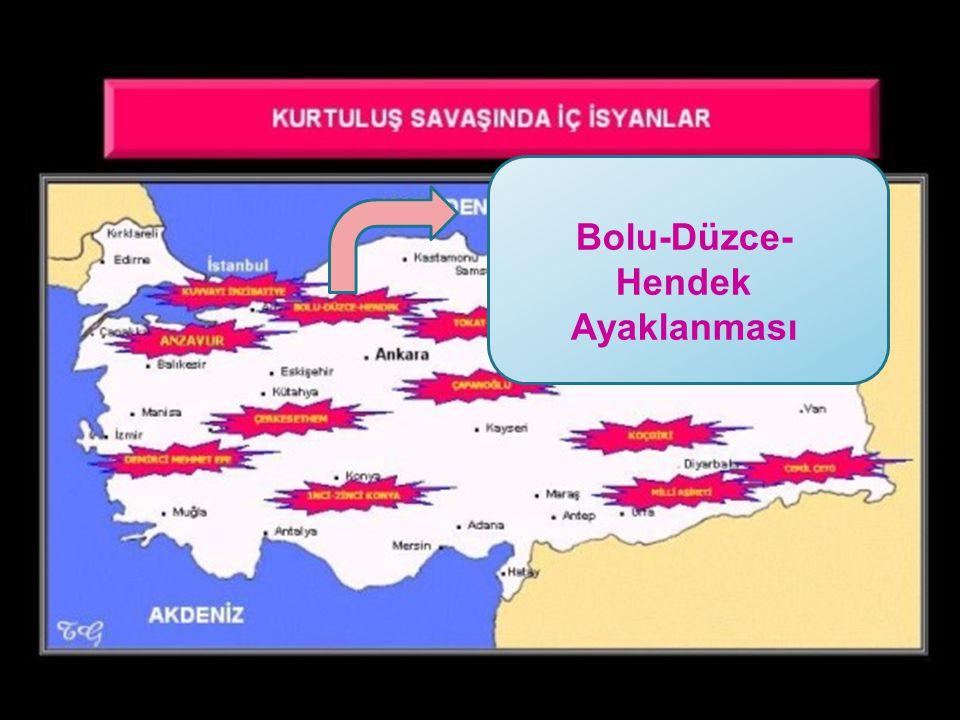 Bolu-Düzce-Hendek Ayaklanması