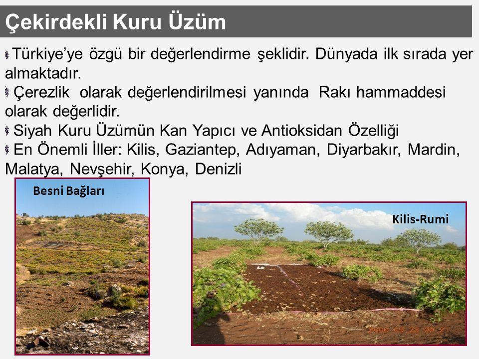 Çekirdekli Kuru Üzüm Türkiye'ye özgü bir değerlendirme şeklidir. Dünyada ilk sırada yer almaktadır.