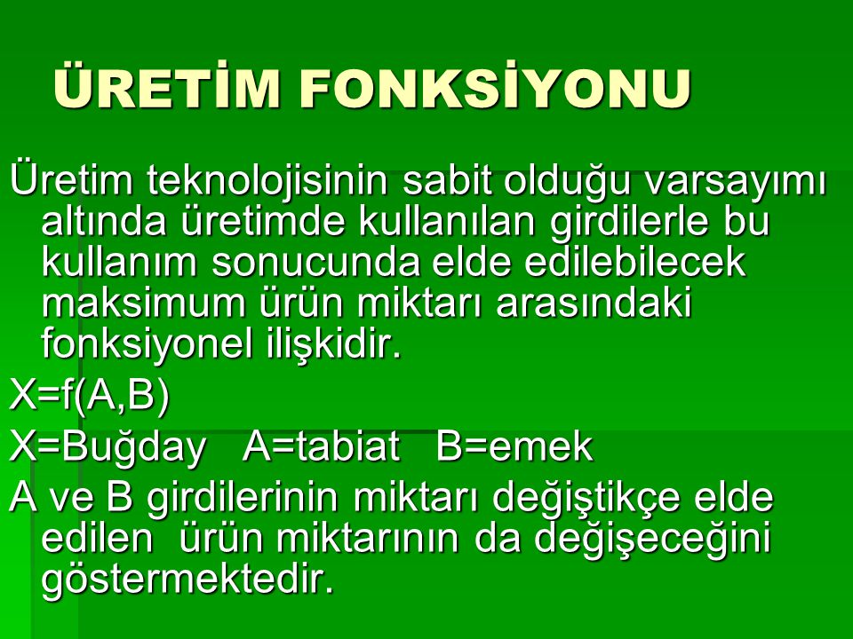 ÜRETİM FONKSİYONU