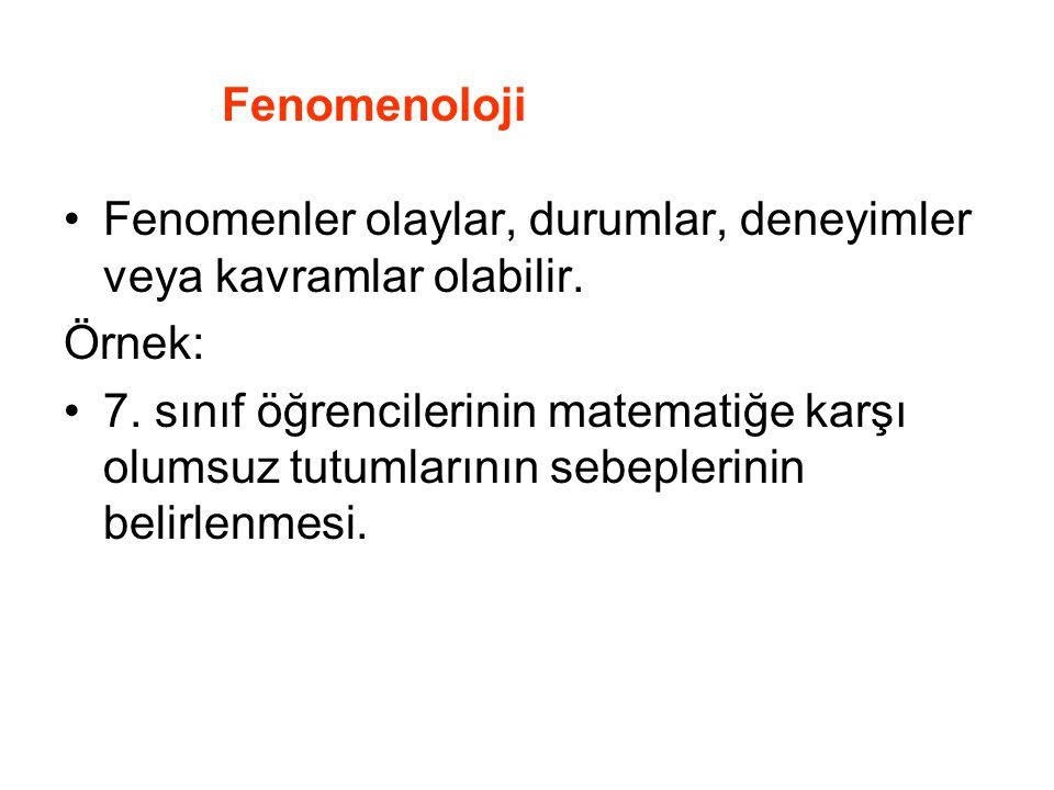 Fenomenoloji Fenomenler olaylar, durumlar, deneyimler veya kavramlar olabilir. Örnek: