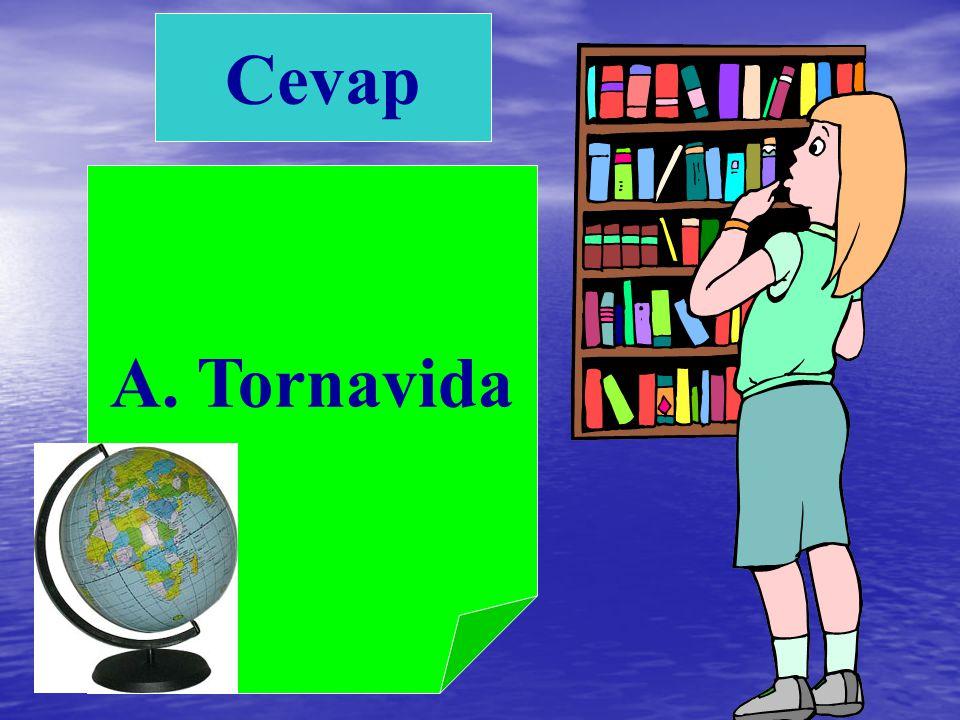 Cevap A. Tornavida