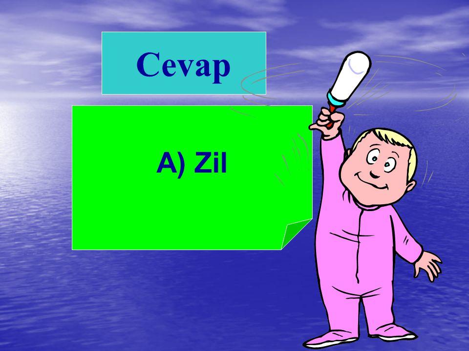 Cevap A) Zil