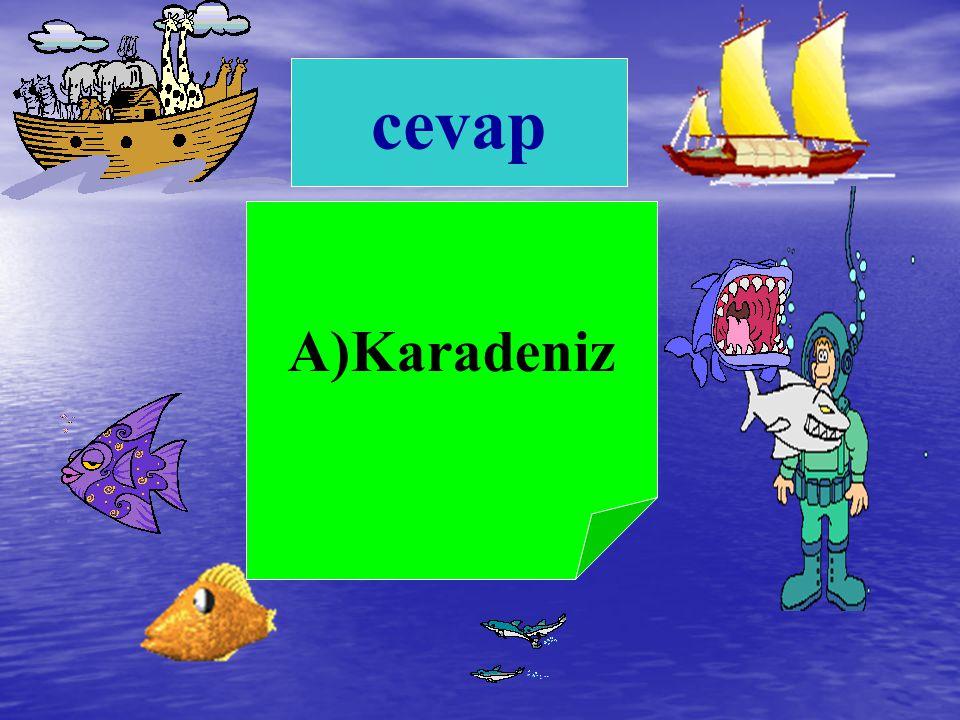 cevap A)Karadeniz