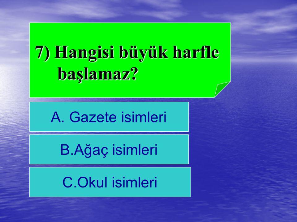 7) Hangisi büyük harfle başlamaz