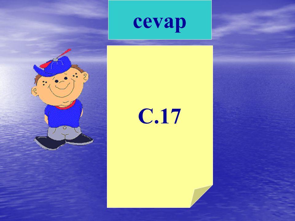 cevap C.17
