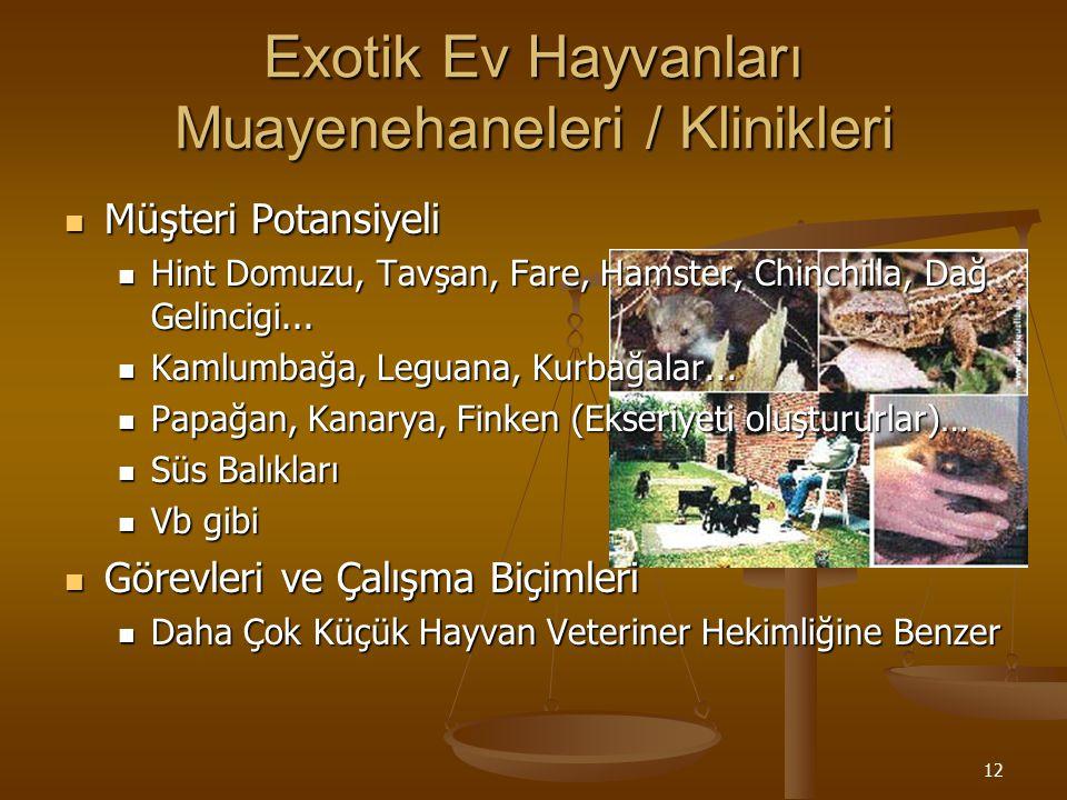 Exotik Ev Hayvanları Muayenehaneleri / Klinikleri
