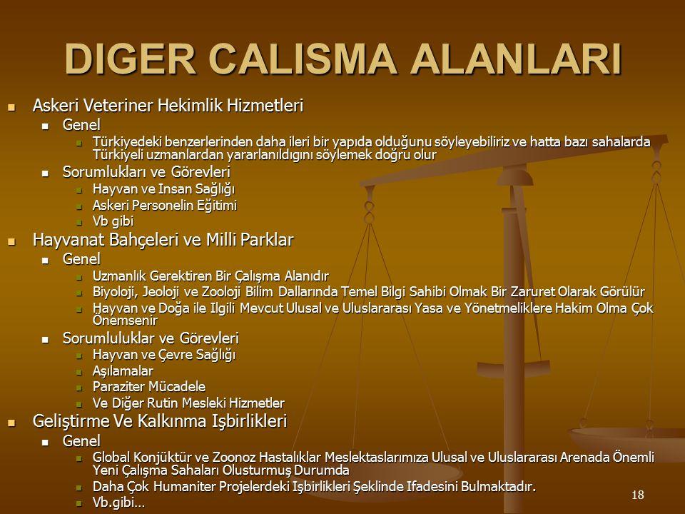DIGER CALISMA ALANLARI