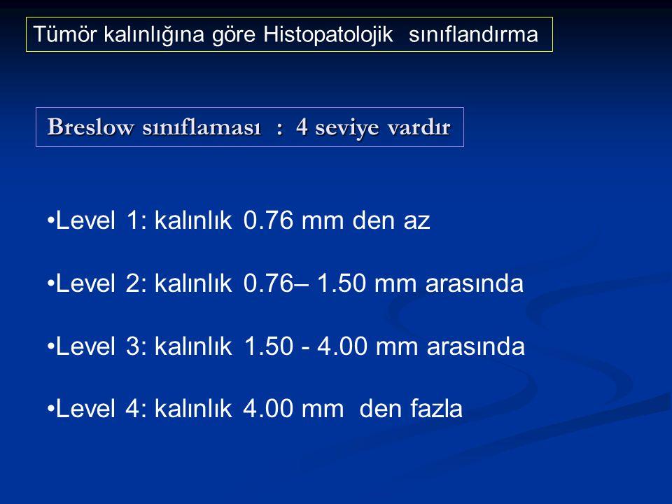 Level 1: kalınlık 0.76 mm den az