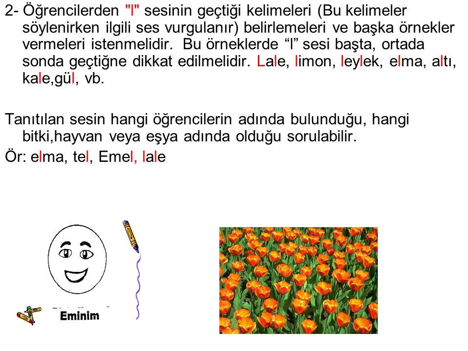 2- Öğrencilerden l sesinin geçtiği kelimeleri (Bu kelimeler söylenirken ilgili ses vurgulanır) belirlemeleri ve başka örnekler vermeleri istenmelidir. Bu örneklerde l sesi başta, ortada sonda geçtiğne dikkat edilmelidir. Lale, limon, leylek, elma, altı, kale,gül, vb.