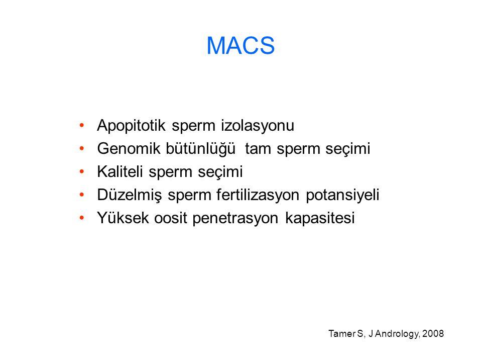 MACS Apopitotik sperm izolasyonu Genomik bütünlüğü tam sperm seçimi
