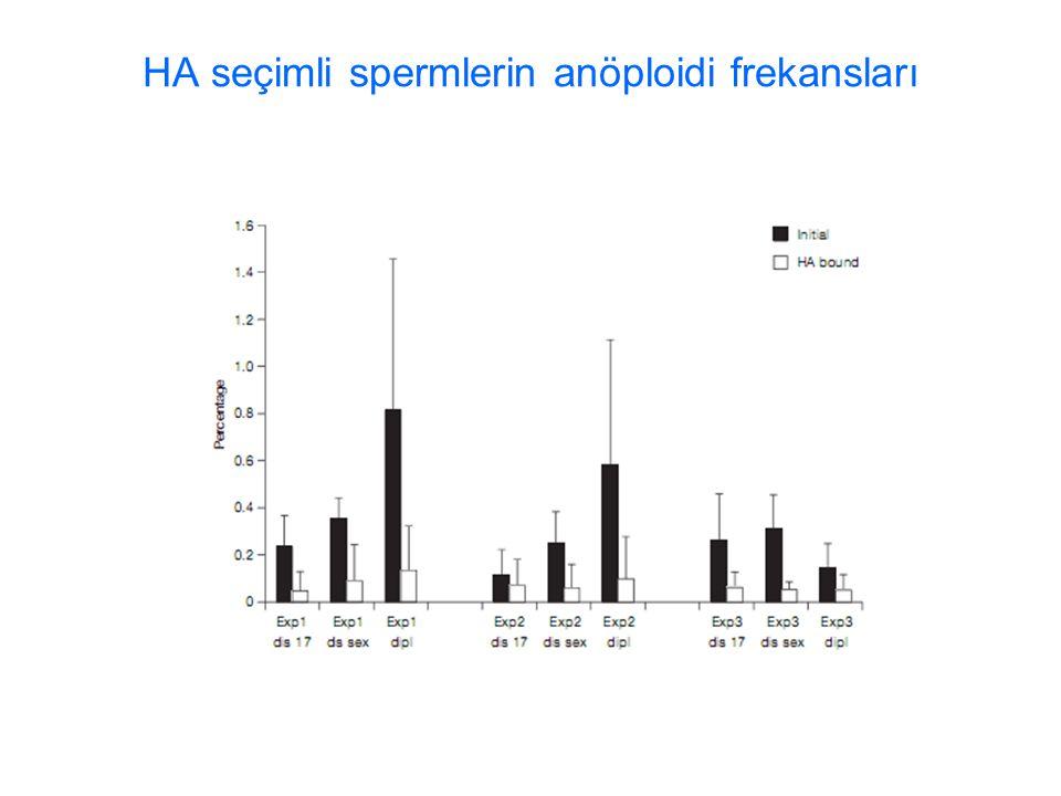 HA seçimli spermlerin anöploidi frekansları